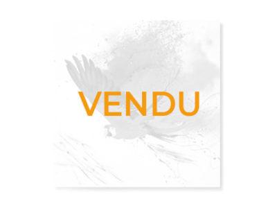 Vendu - Cadre toile perroquet Tropika - Promotion