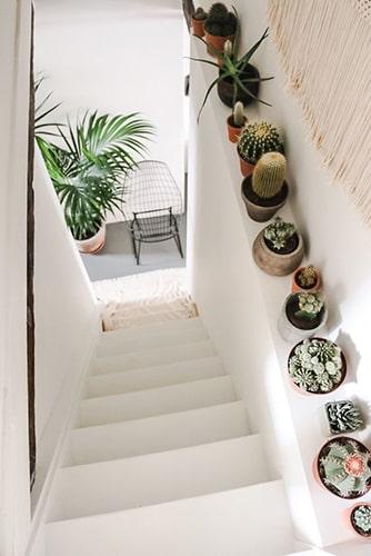 Décorer l'escalier avec des plantes Meubles Bouchiquet