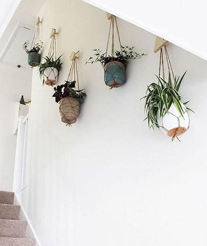 Décorer l'escalier avec des plantes suspendues Meubles Bouchiquet