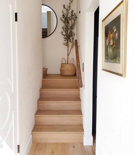 Décorer l'escalier avec une plante Meubles Bouchiquet